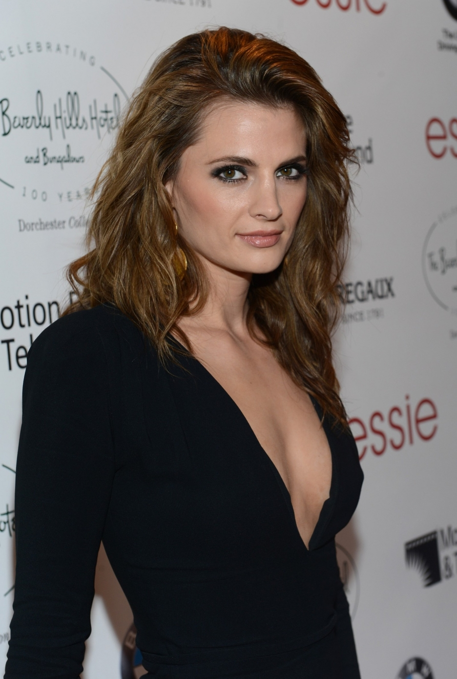 Stana katic married or single