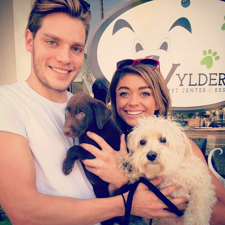 Sarah Hyland and her then-boyfriend, Dominic Sherwood holding dogs on their hands