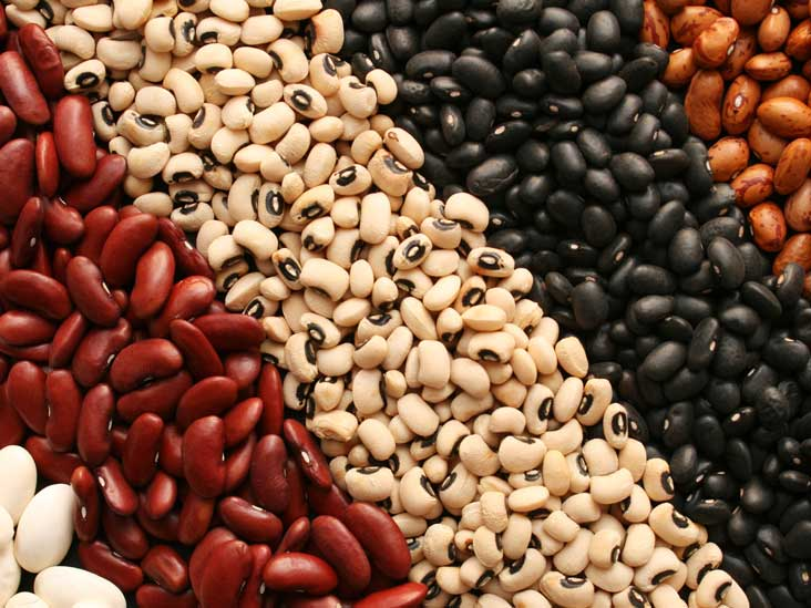 Lots of varieties of beans shown